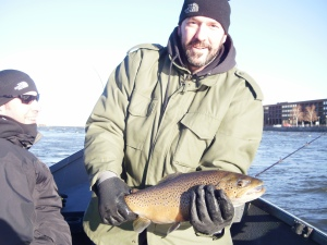 This nice male Brown Trout hit while fishing a Chatruse and fire dot hot shot behind my drift boat